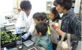 「農学部収穫祭2010」の開催について(2010/11/03)