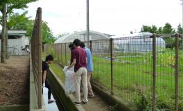 第1回目の農学部クリーンキャンパスを実施しました。