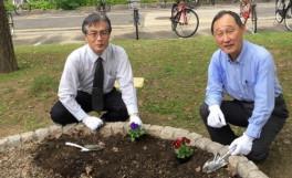 幸町キャンパス『キャンパス花いっぱい運動』に参加